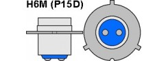 H6M (P15D)